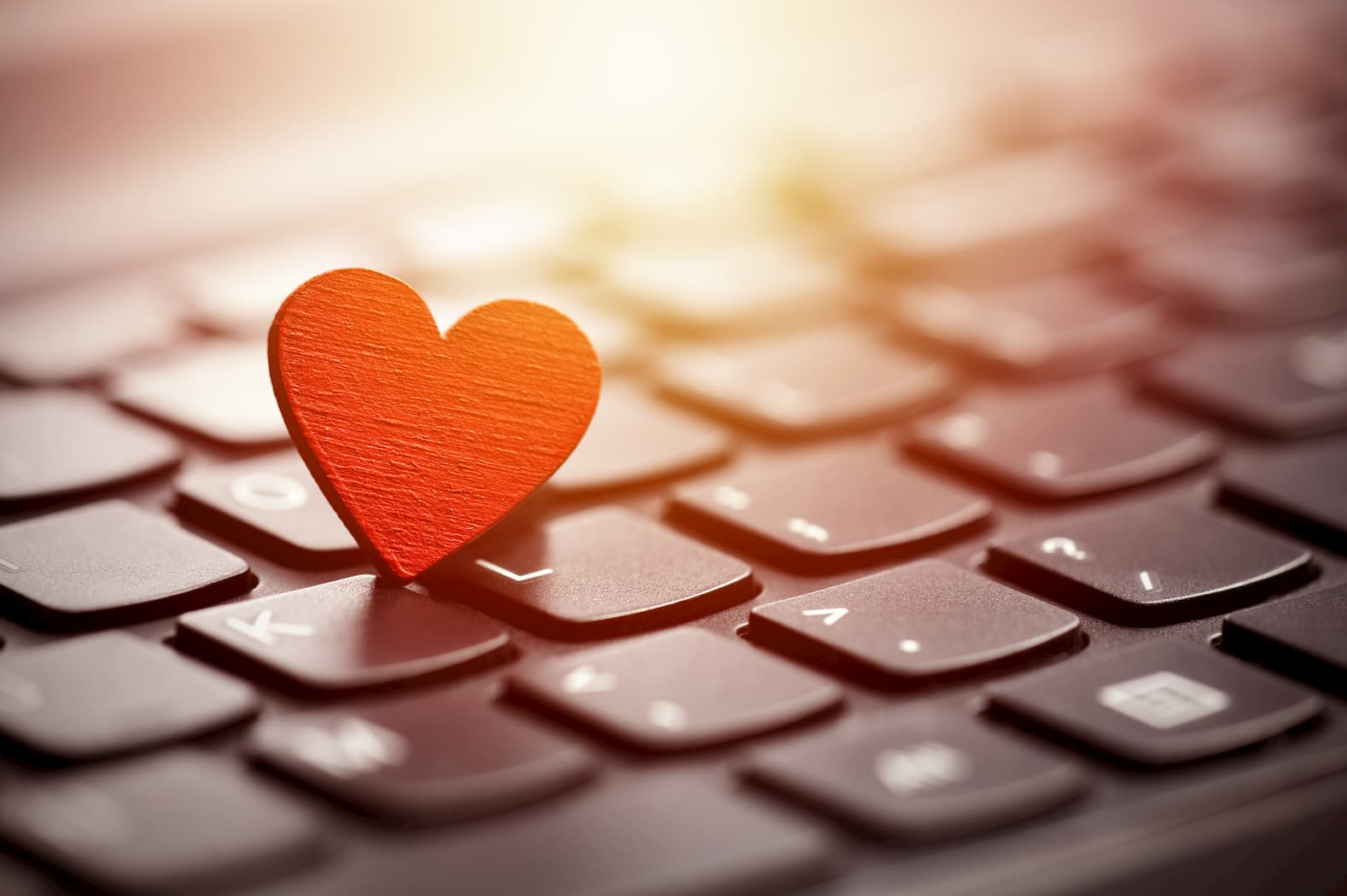 The Common Rules Of Online Dating